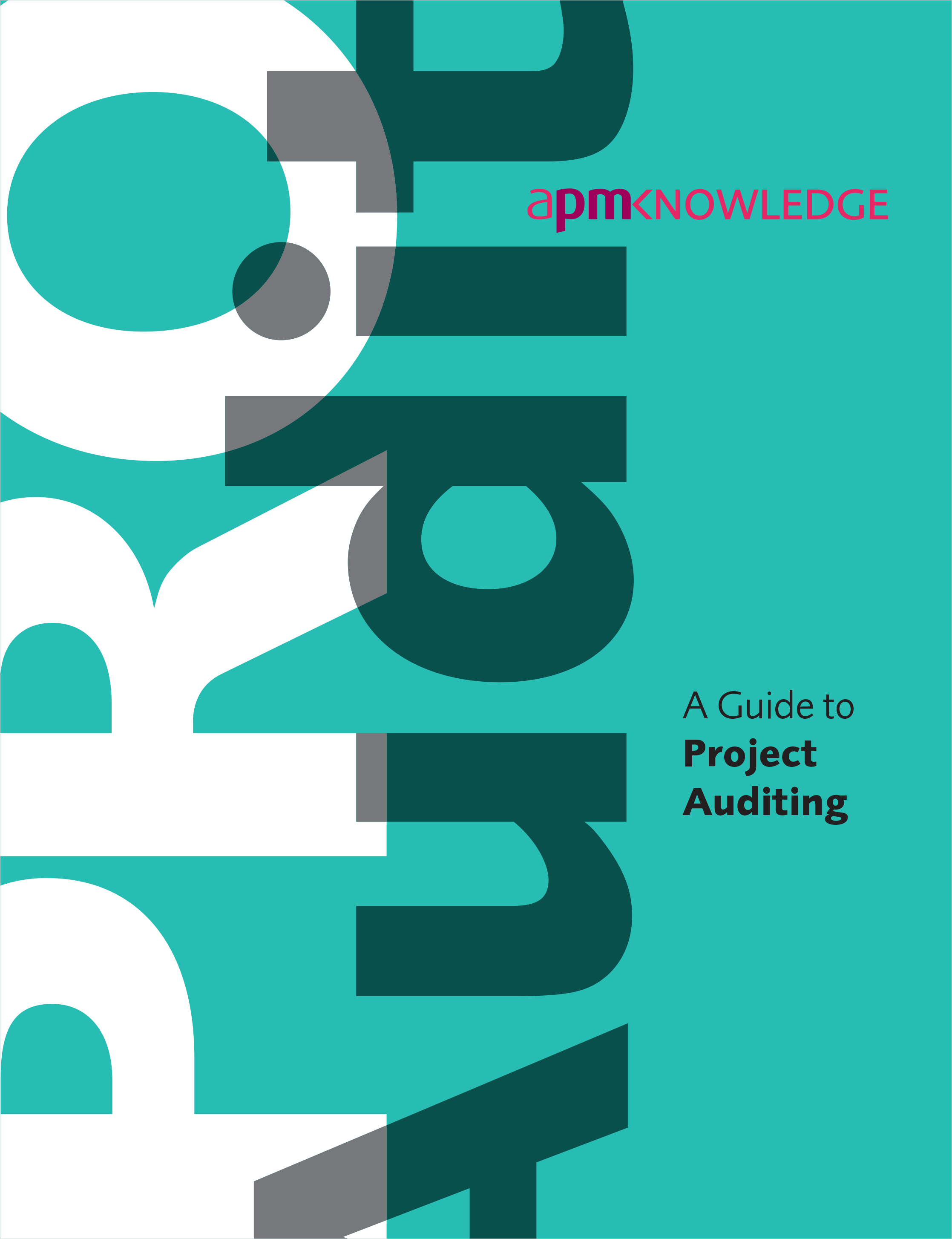 A Guide to Project Auditing